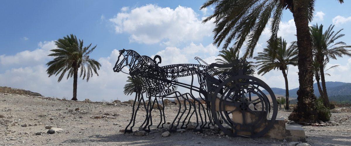 גן לאומי תל מגידו (צילום: שרית פלצ'י מיארה)