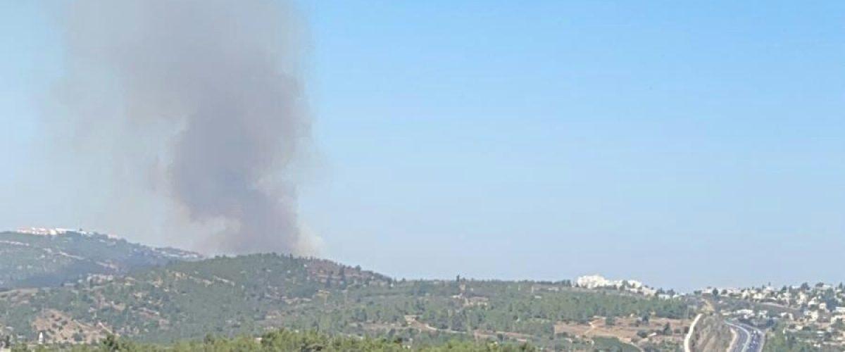 השריפה באזור אתמול (צילום: אריה אברהם)