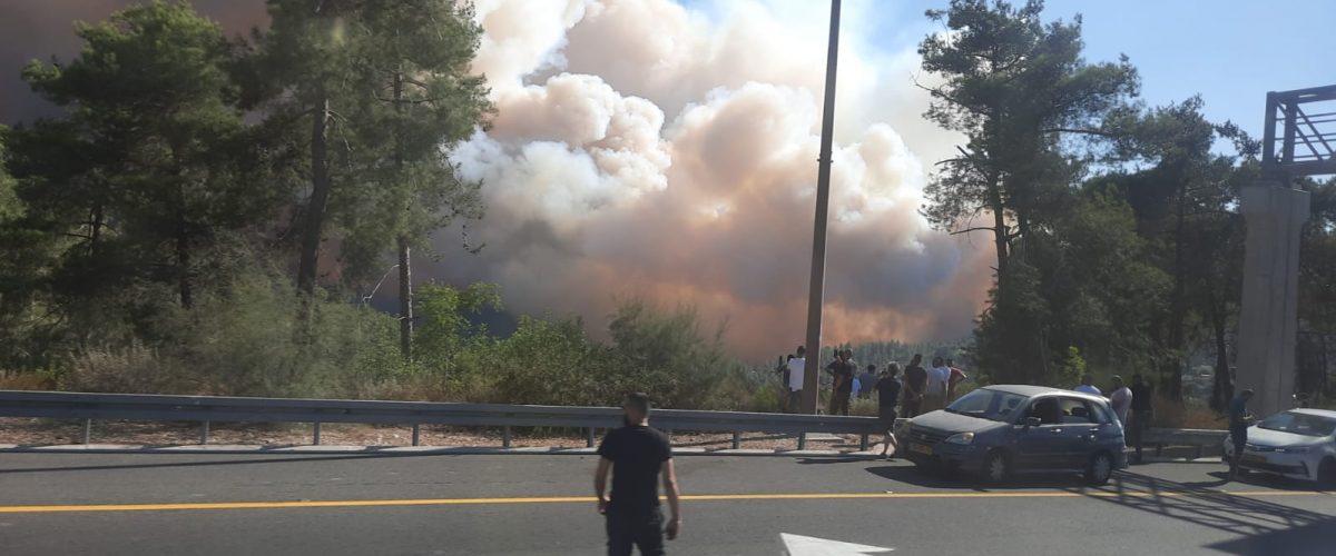 כך נראים האש והעשן מכביש 1 (צילום: איילת שפיבק)