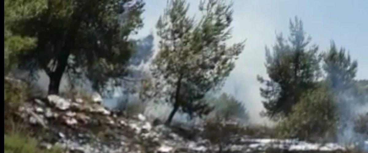 צילום מסך מתוך סרטון שפרסמה דוברות הכבאות (ארכיון)